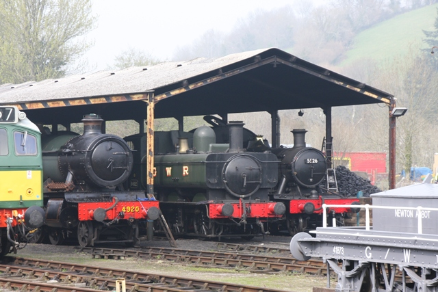 Many engines on shed in Buckfastleigh Yard 2009Apr03